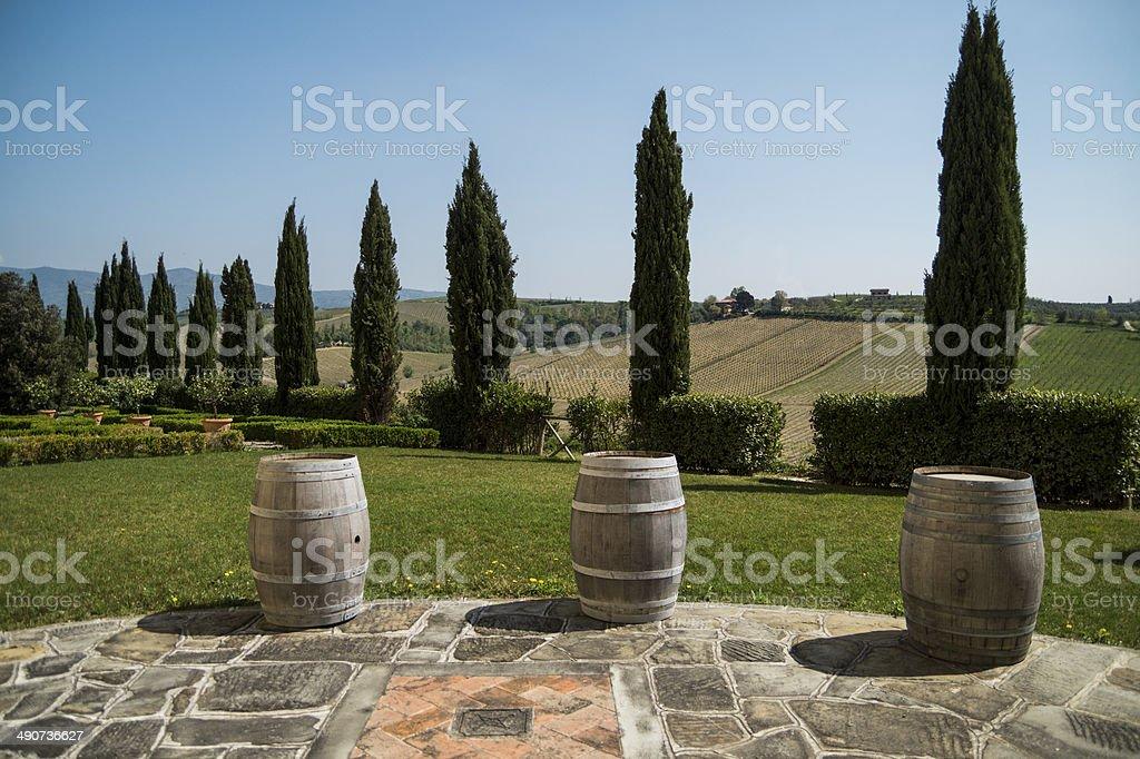Cypress Tree and wine barrels, Chianti - Florence royalty-free stock photo