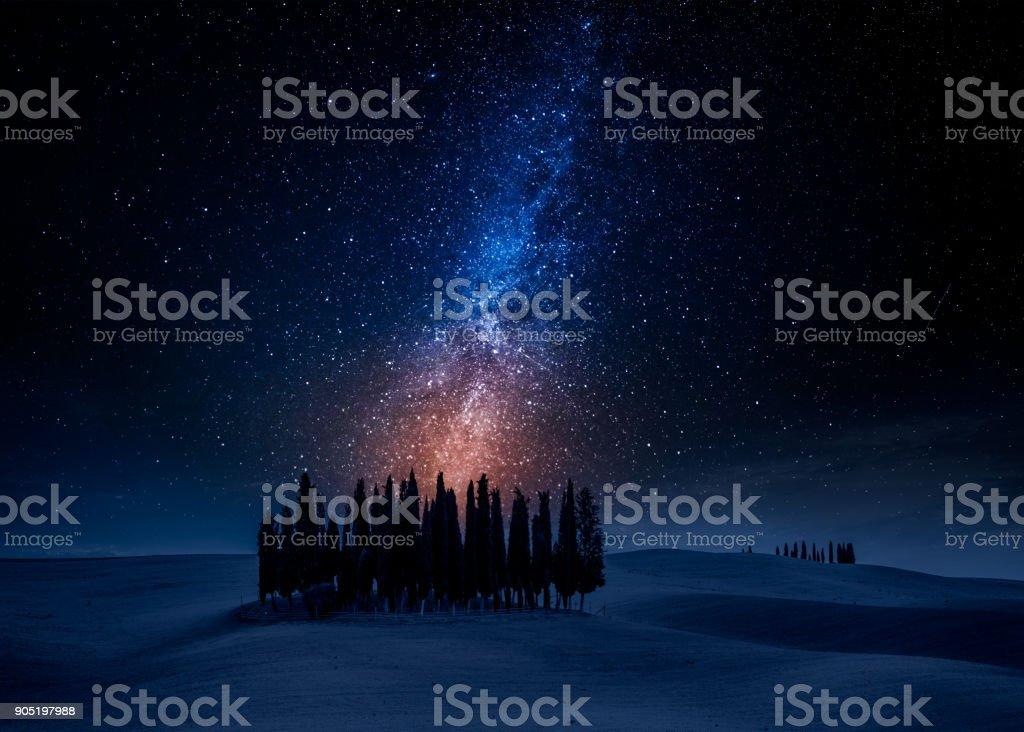 Cypress trees on field at night with stars, Tuscany, Italy stock photo