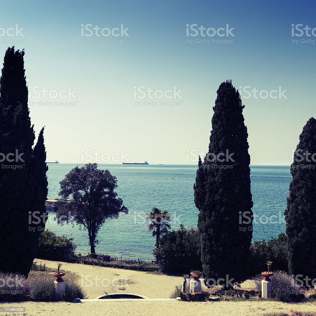 Cypresses at the seafront royalty-free stock photo
