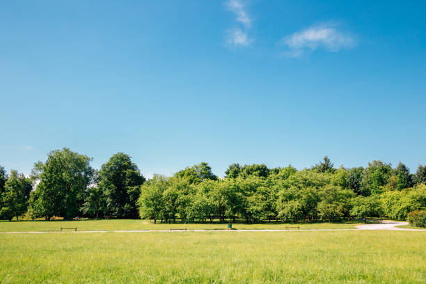 Cytadela Park, green field with blue sky in Poznan, Poland stock photo