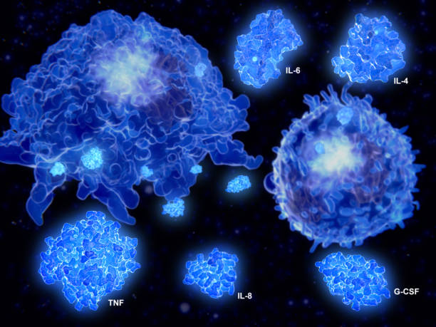 Cytokine storm, macrophage and T effector cell segregate the cytokines IL-4, IL-6, IL-8, G-CSF and TNF stock photo