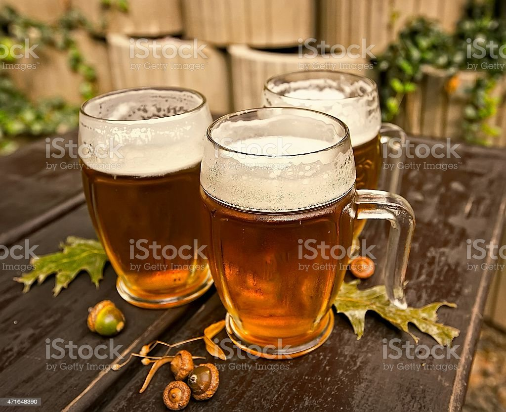 czech beer stock photo