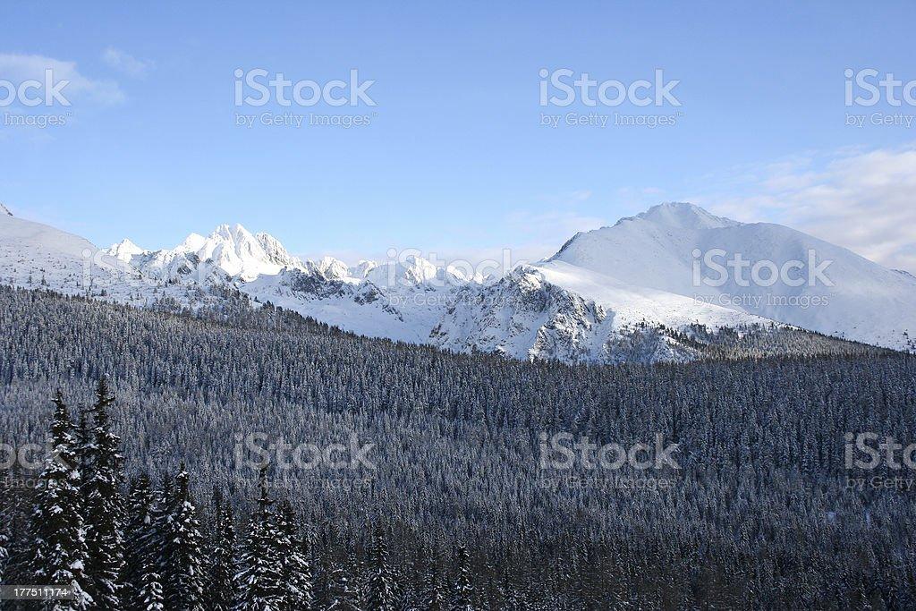 Czech Winter view royalty-free stock photo