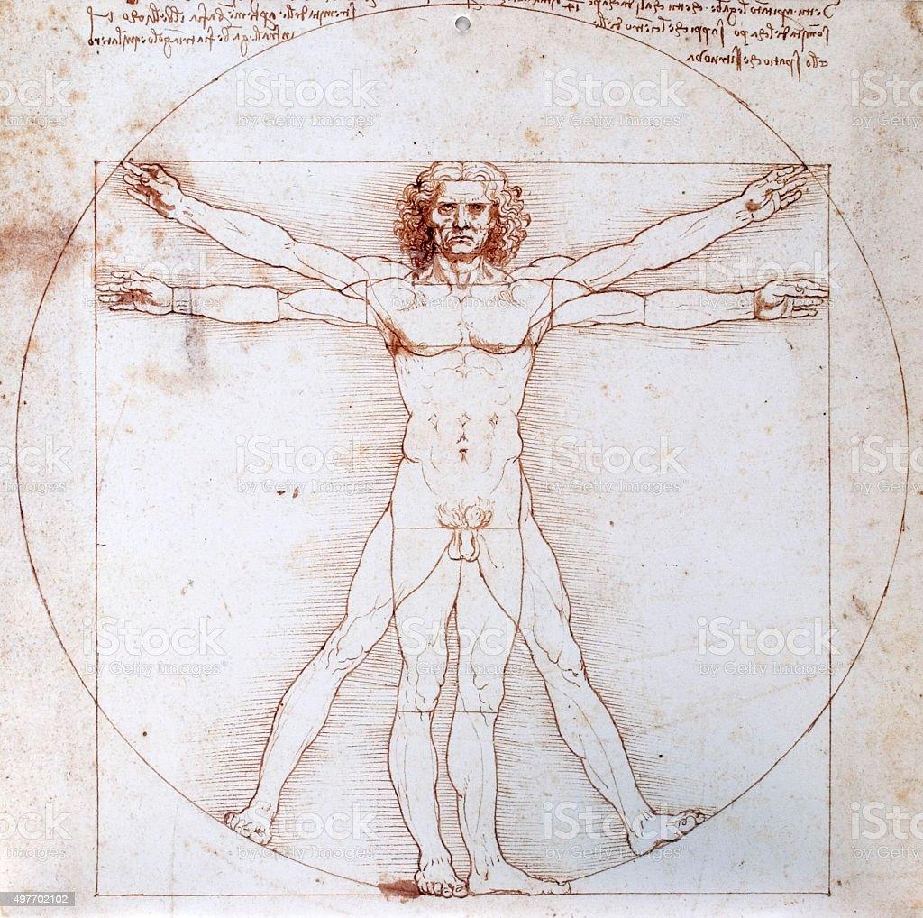 Da Vinci Vitruv stock photo