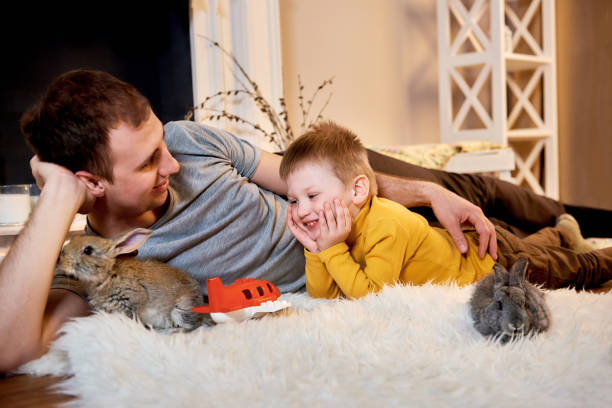 Dad and son are playing with the rabbits at home picture id931648290?b=1&k=6&m=931648290&s=612x612&w=0&h=efet9dal3tkc2gd7l1gephng1a46qqp adaiv0qhqyk=