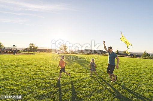 Dad and his two kids fly a kite through a grassy field on a beautiful summer day. He's helping hold it aloft while the youngest, a girl, flies it. Big brother is running in front. There is a playground in the background.