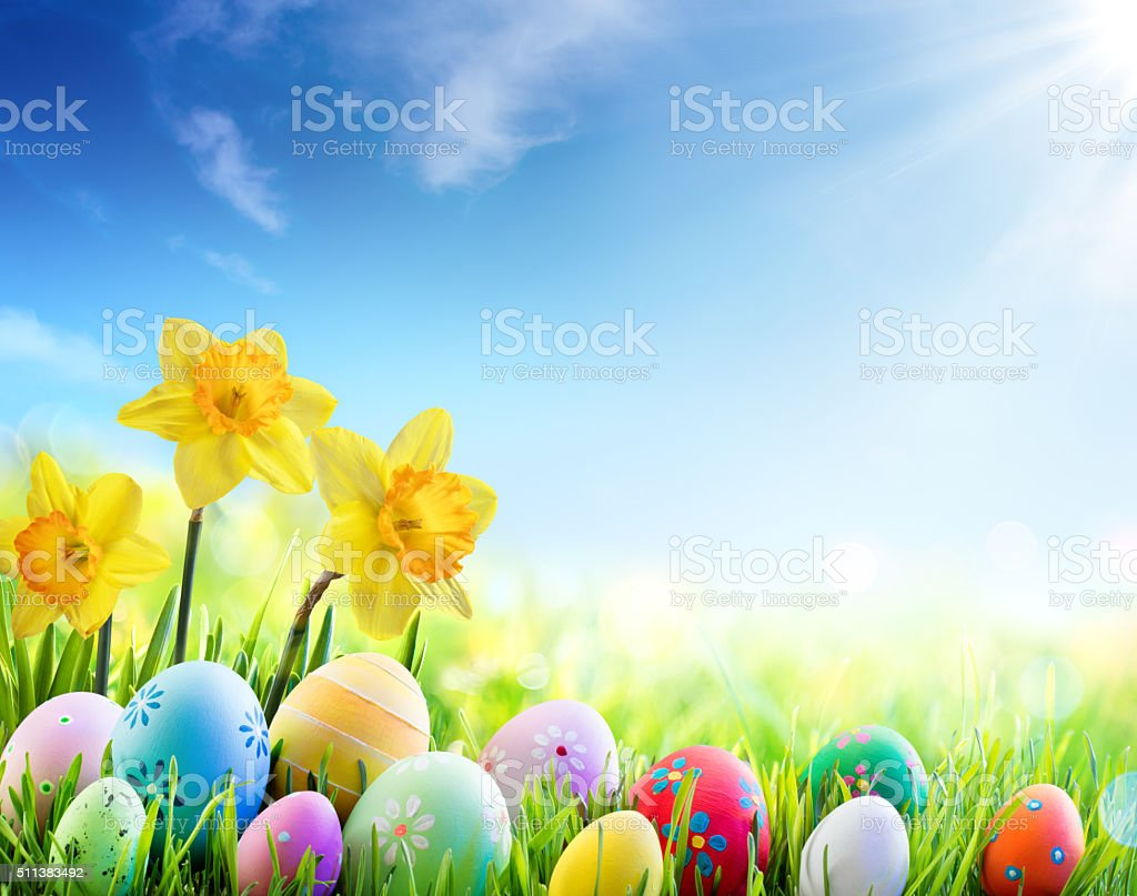 Daffodils And Colorful Eggs On Green Meadow stock photo