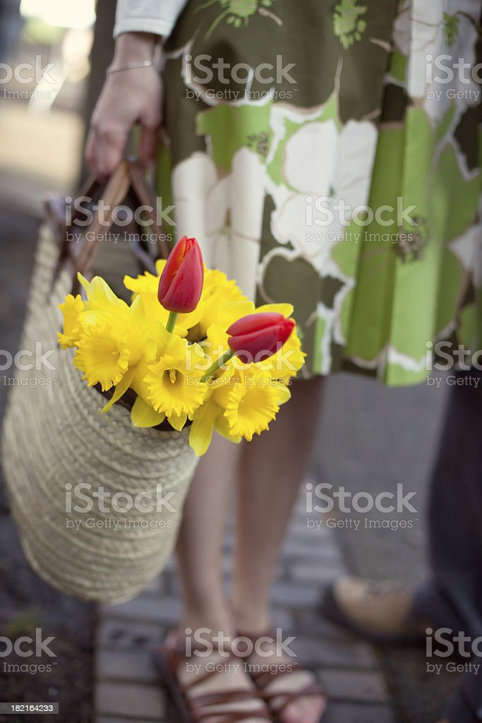 Daffodils and tulips in a basket royalty-free stock photo