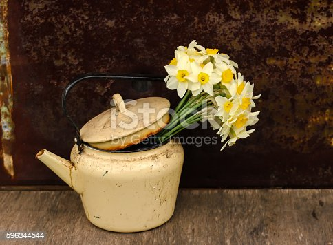 Daffodils In A Pot Stock Photo & More Pictures of Bouquet