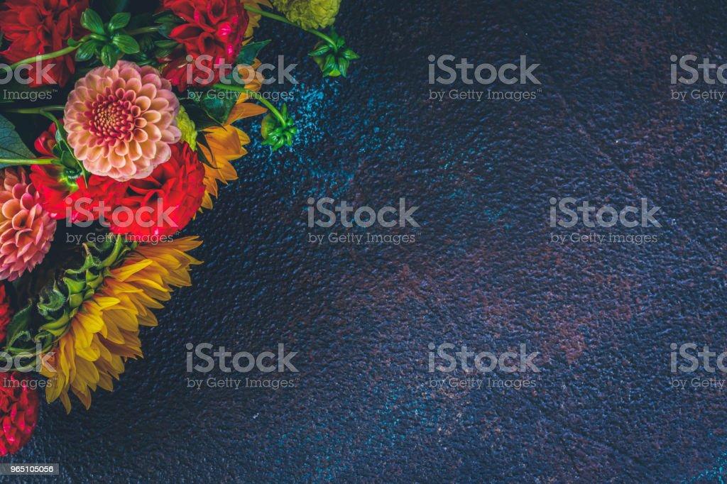 Dahlia and sunflowers royalty-free stock photo