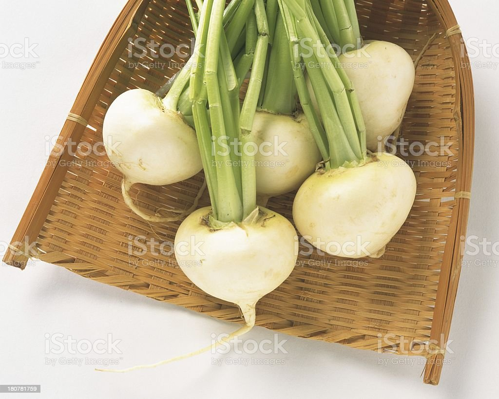 Daikon radish isolated royalty-free stock photo