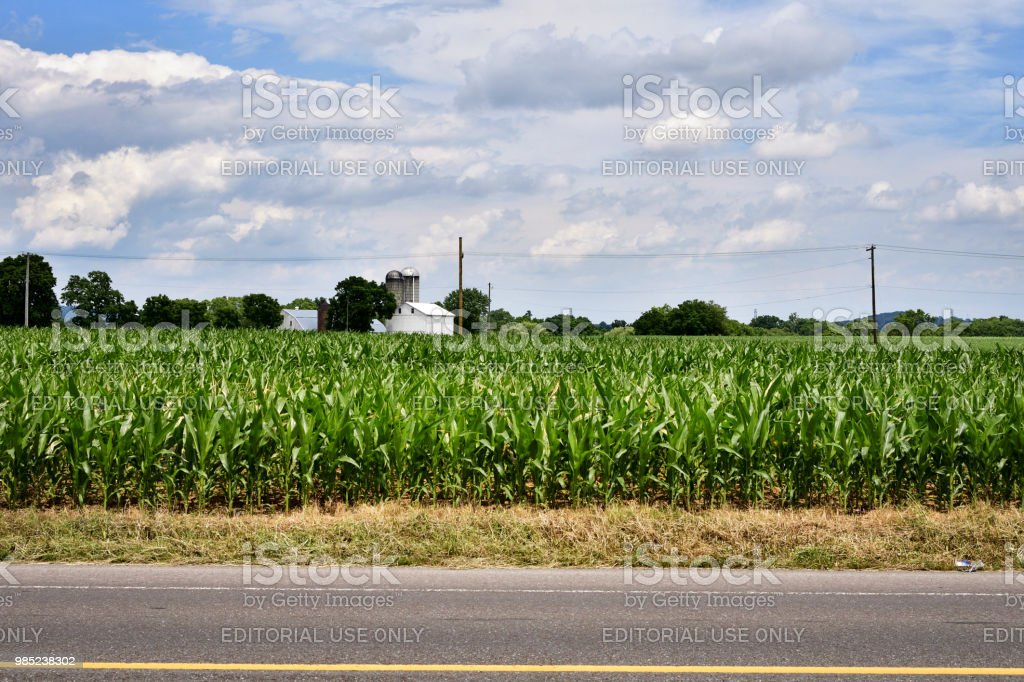 Daily life in Rural USA, Lancaster County, PA stock photo