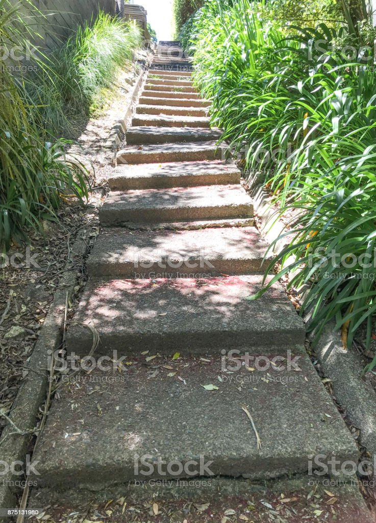 Daily walk up steps stock photo