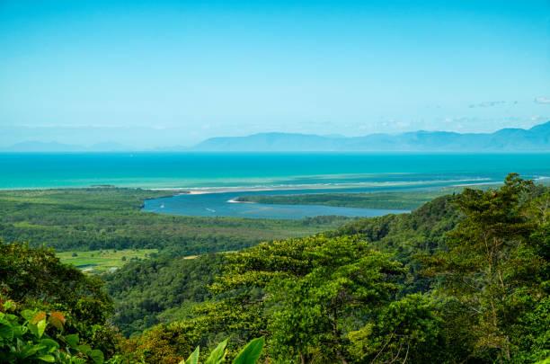 daintree river and rainforest, north queensland, australia - estuário imagens e fotografias de stock