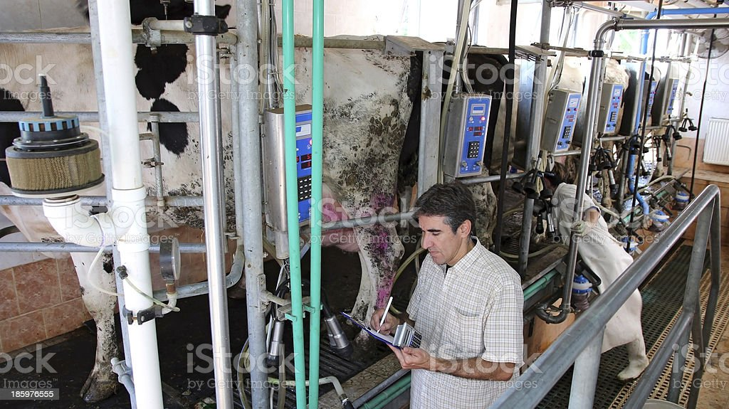 Dairy Business Management stock photo