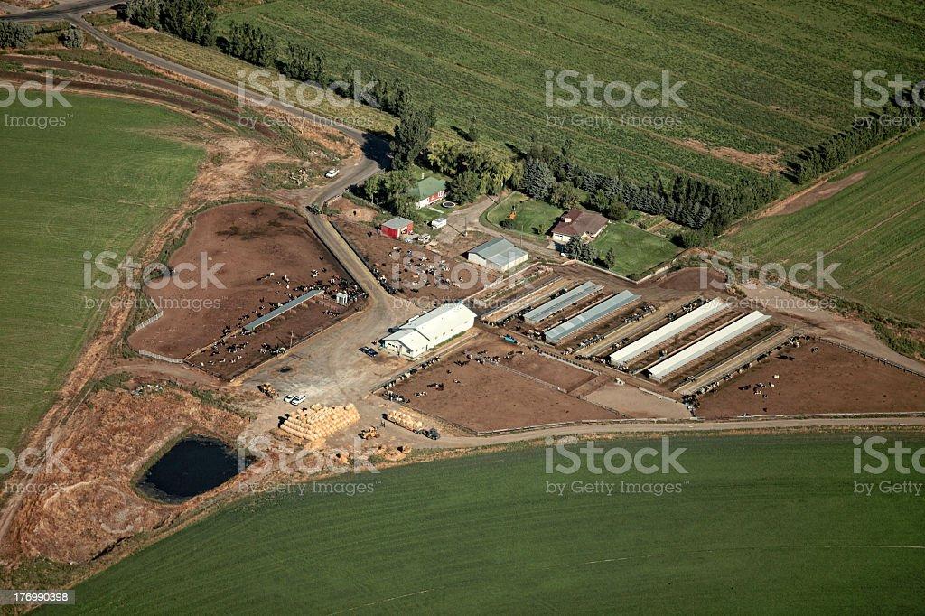 Dairy Farm Aerial stock photo