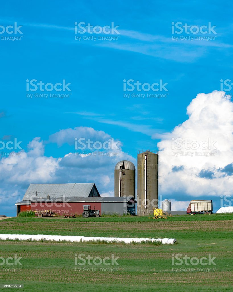 Dairy farm on a hill - vertical - Photo