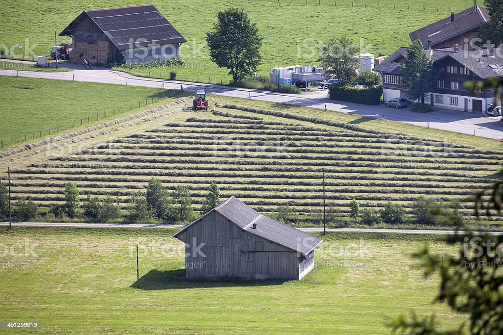 Dairy farmer making windrows of hay, Switzerland royalty-free stock photo