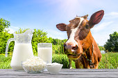 Dairy products on a wooden table against the background of a cow and pasture