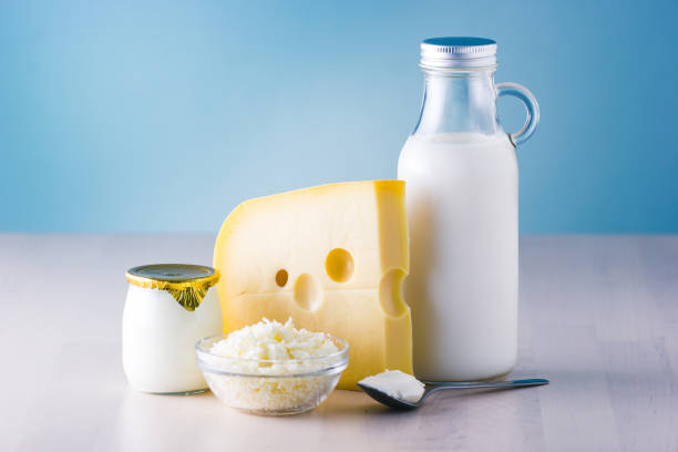 dairy products such as milk, cheese, egg, yogurt and butter. - formaggio foto e immagini stock