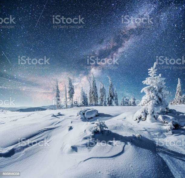 Dairy star trek in the winter woods dramatic and picturesque scene in picture id856858038?b=1&k=6&m=856858038&s=612x612&h=tvrip1g3mfdjwf8xoaivkl4dcxzfek02kf3p0hhui2m=