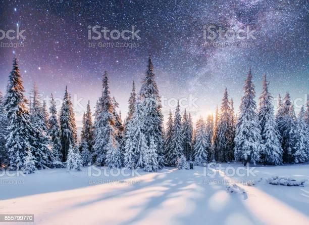 Dairy star trek in the winter woods picture id855799770?b=1&k=6&m=855799770&s=612x612&h=qs7yosxv4vzxi6aw4amohhwj8xafxovpors gga7gao=