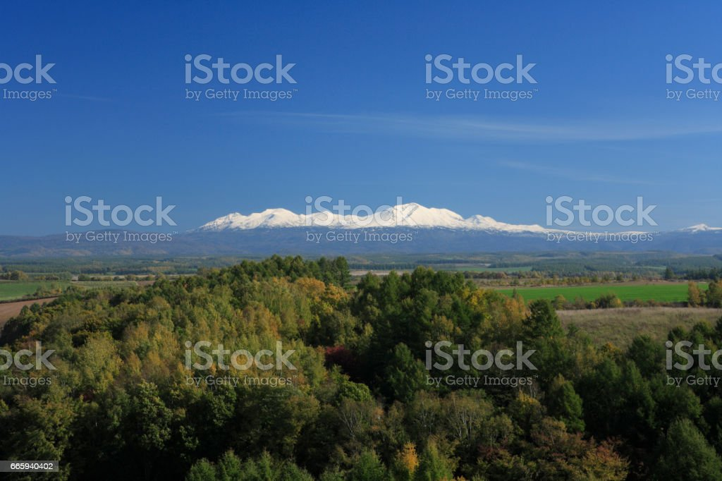 Daisetsuzan mountains and forest foto stock royalty-free