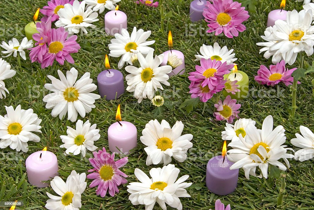 Daisies and Candles royalty-free stock photo