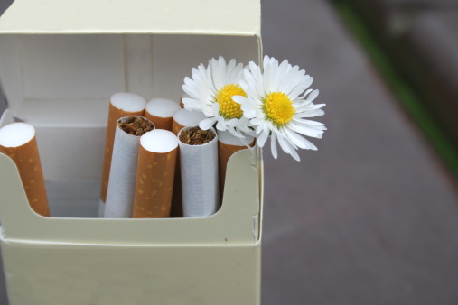 Daisies And Cigarettes Stock Photo - Download Image Now - iStock
