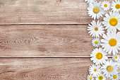 White daisy flowers above wooden background, with copy space available for text.