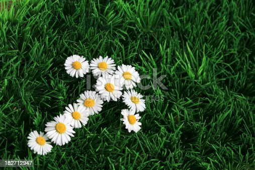 An arrow sign made of fresh daisies in the lawn. Space for text.