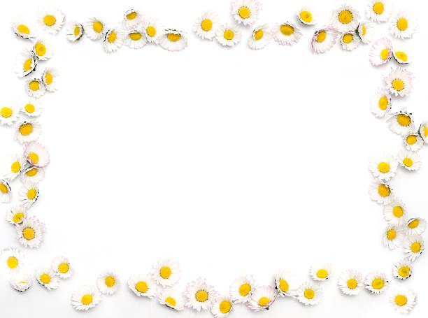 Daisy border picture id173812580?b=1&k=6&m=173812580&s=612x612&w=0&h=ctpp89 sqgrvf af6vtd1blznwlozoasaldgmnaktwy=