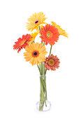 istock Daisy Bouquet 173629264