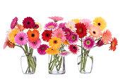 istock Daisy Bouquet 173824966