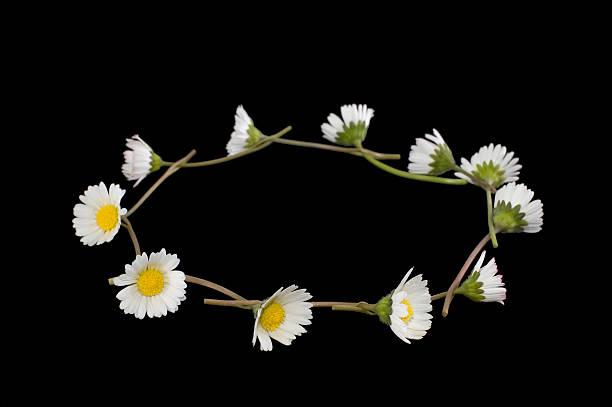 Daisy chain on black picture id93150484?b=1&k=6&m=93150484&s=612x612&w=0&h=s5m5whnlgm92c8v4szuqonnkjdzkzxdjtar7nbdj6au=