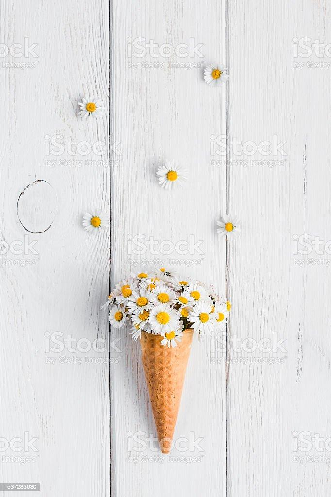 daisy flowers in the ice cream cone stock photo