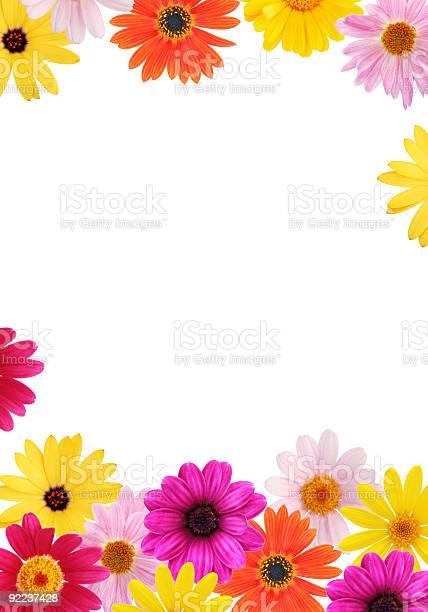 Daisy frame picture id92237428?b=1&k=6&m=92237428&s=612x612&h=thwprgqtzf2bhmu4w0wfwazac6hqsp0hh7yuqhdxj4y=