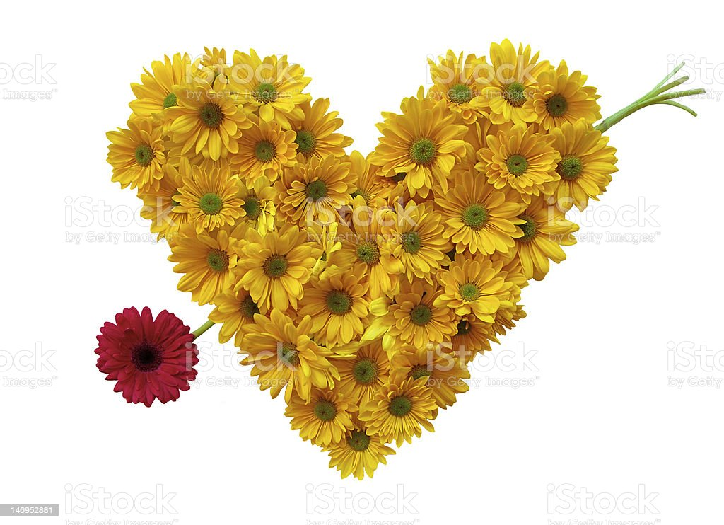 Daisy Heart with arrow stock photo
