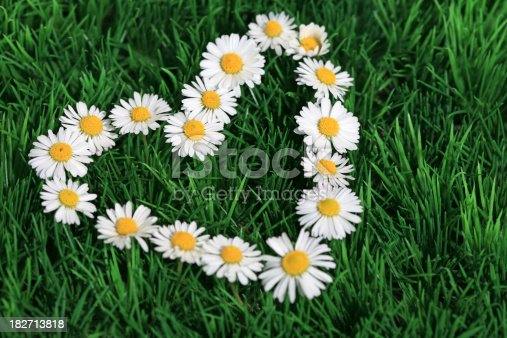 A heart shape made of fresh daisies in the lawn. Perfect background for Wedding or Valentine's Day.