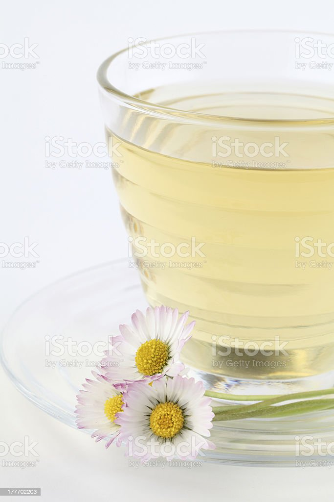 Daisy tea royalty-free stock photo