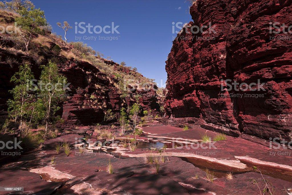 Dale Gorge Karijini National Park Creek royalty-free stock photo