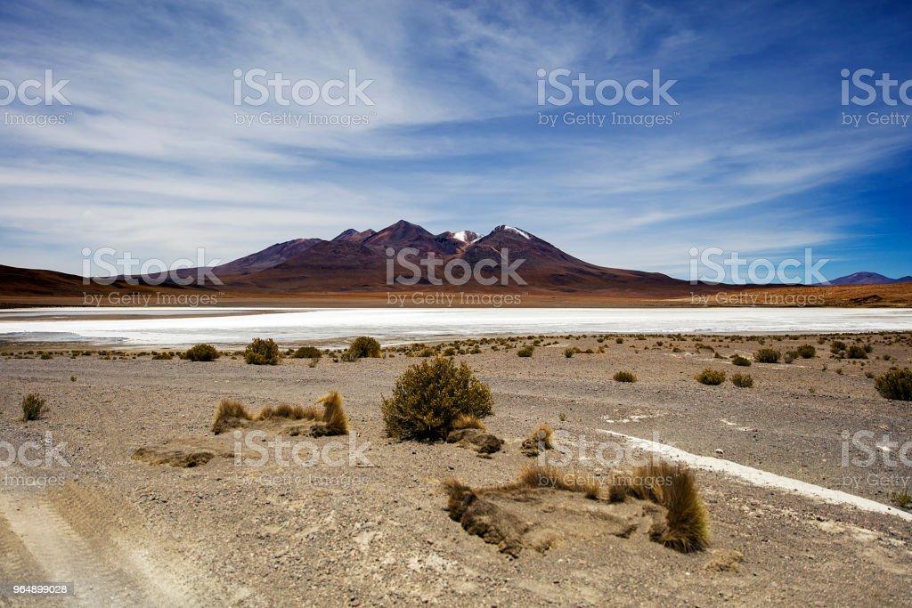 Dali Desert in Bolivia royalty-free stock photo