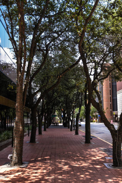 Dallas street stock photo