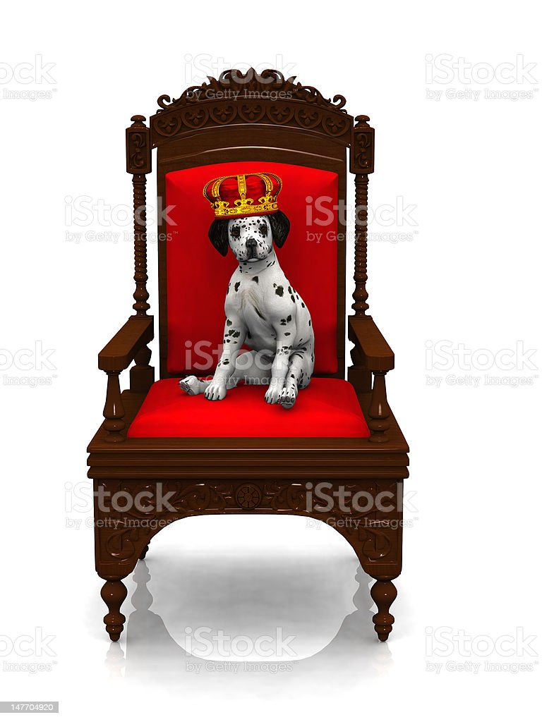 Dalmatian puppy prince royalty-free stock photo
