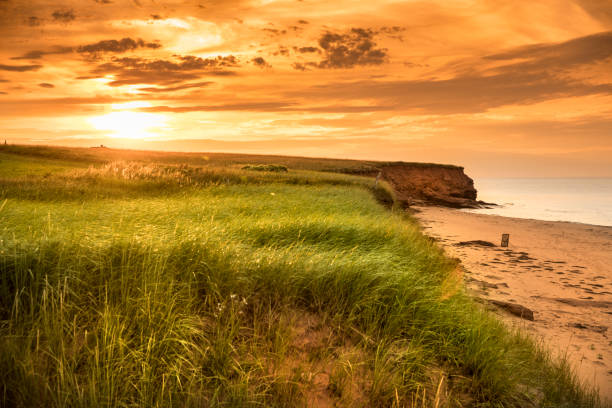 dalvay beach on the atlantic shore in pei canada - prince edward island stock photos and pictures