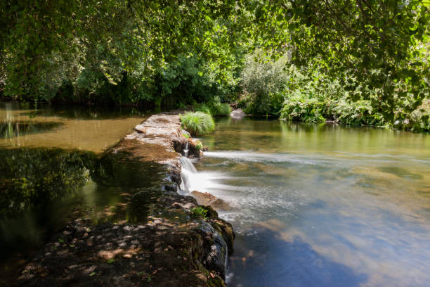 dam in a river of crystalline water, surrounded by green vegetation. - fotos de barragem portugal imagens e fotografias de stock