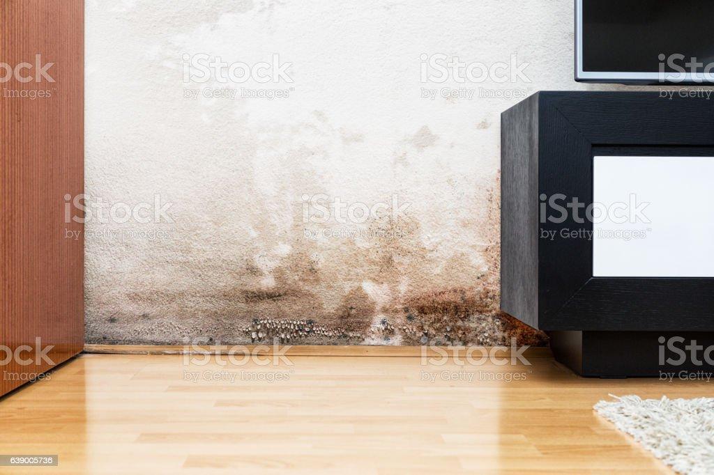 Los daños causados por humedad en una pared en casa moderna - foto de stock