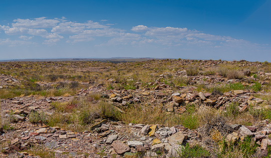 Attracted to the lush flood plain of the Paayu, native people arrived at Homolovi around 1330AD.  They came from the Hopi Mesas which are 60 miles north.  The Paayu is now known as the Little Colorado River.  About 750 to 1000 people lived here, in a 1200 room village.  They farmed corn, beans, squash and cotton in the flood plain and sand dunes.  They also gathered native wild foods growing in the area and hunted for beaver, antelope, deer, elk and waterfowl.  The Homolovi people left the Little Colorado River valley sometime prior to 1400AD and probably made their way back to their ancestral villages on the Hopi Mesas.  In the 1960's the ancient dwellings were threatened by illegal collectors of ancient artifacts.  This photograph shows holes dug in and around the dwellings.  Homolovi State Park was eventually established to protect the artifacts and dwellings.  Homolovi State Park is near Winslow, Arizona, USA.