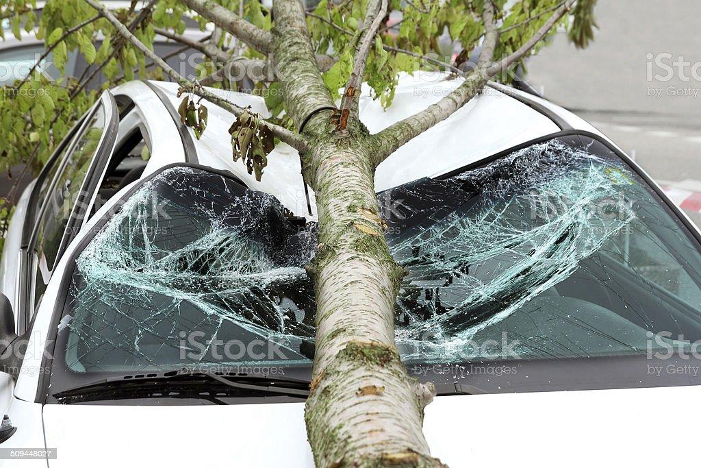 damaged car foto