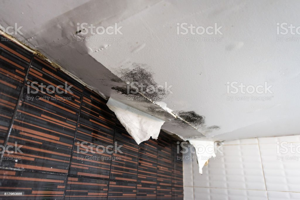 Damaged ceiling from water leak stock photo